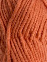 apricot 134